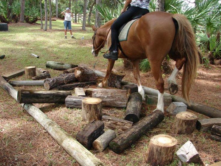 Det ser enkelt at lave og en god forhindring, specielt for heste der går for tit på jævn terræn, som ikke har lært at tænke selv og løfte ben