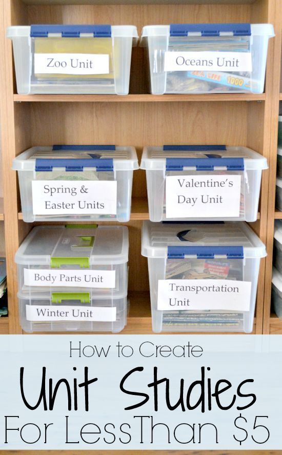 How to Create Unit Studies for Homeschooling for Less Than $5!