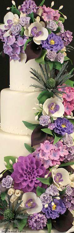 Cake - Mark Joseph