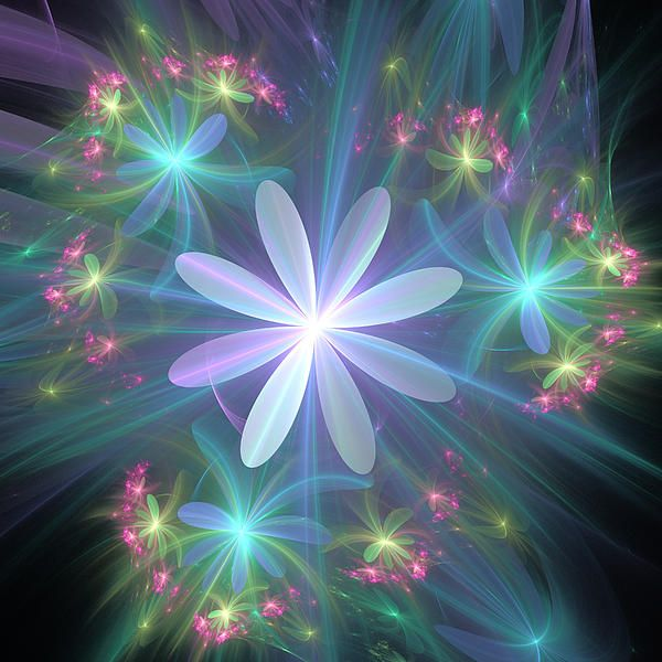 Ethereal Flower In Blossom Digital Art by Svetlana Nikolova - Ethereal Flower In Blossom Fine Art Prints and Posters for Sale
