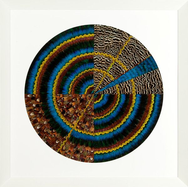 How's this for a splash of colour, texture and shape?  GE Mandala 5 by Fiona Kerr Gedson  Medium Featherwork on Board