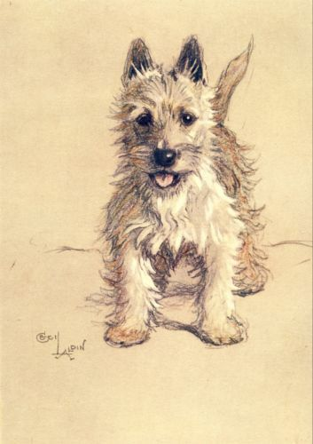 Cecil Aldin--known for his beloved illustrations of animals in early 20th C-- esp Westies and Scottish terriers....