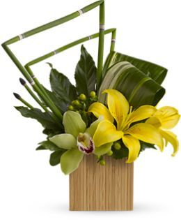 Bamboo Zen | Call Us 206-728-2588 | Seattle Flowers