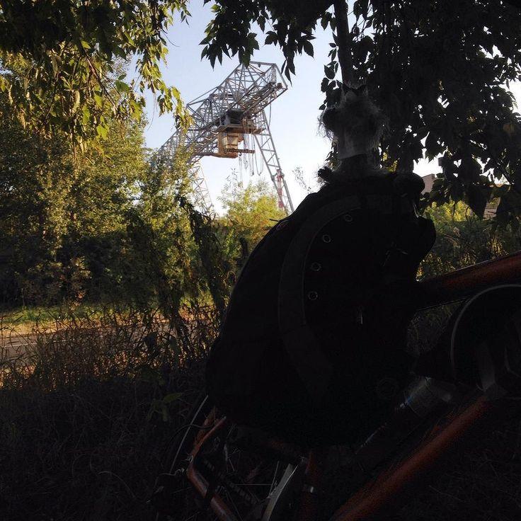 Pedro in the darkness... #Obnibsk city. Raccoon Pedro & #bike. #bikelove #bikelife #bikestagram #bicycle #travel #travelling #russia #россия #велосипед #путешествия #worldwidegifts