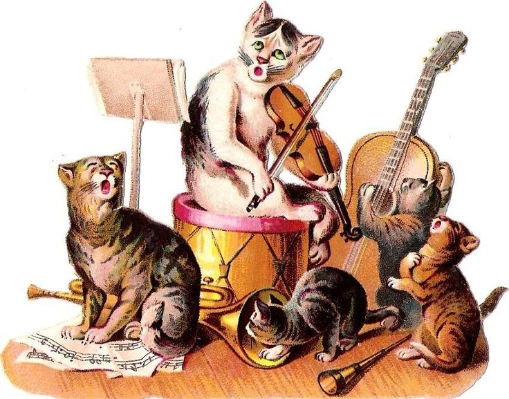 Oblaten Glanzbild scrap die cut chromo  Katzen Musik cat kitten music Konzert