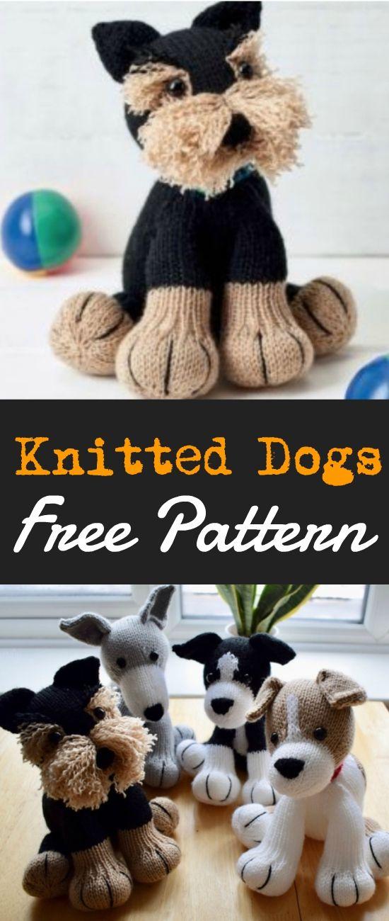 Free Dog Knitting Patterns | Crochet | Knitting patterns, Knitting