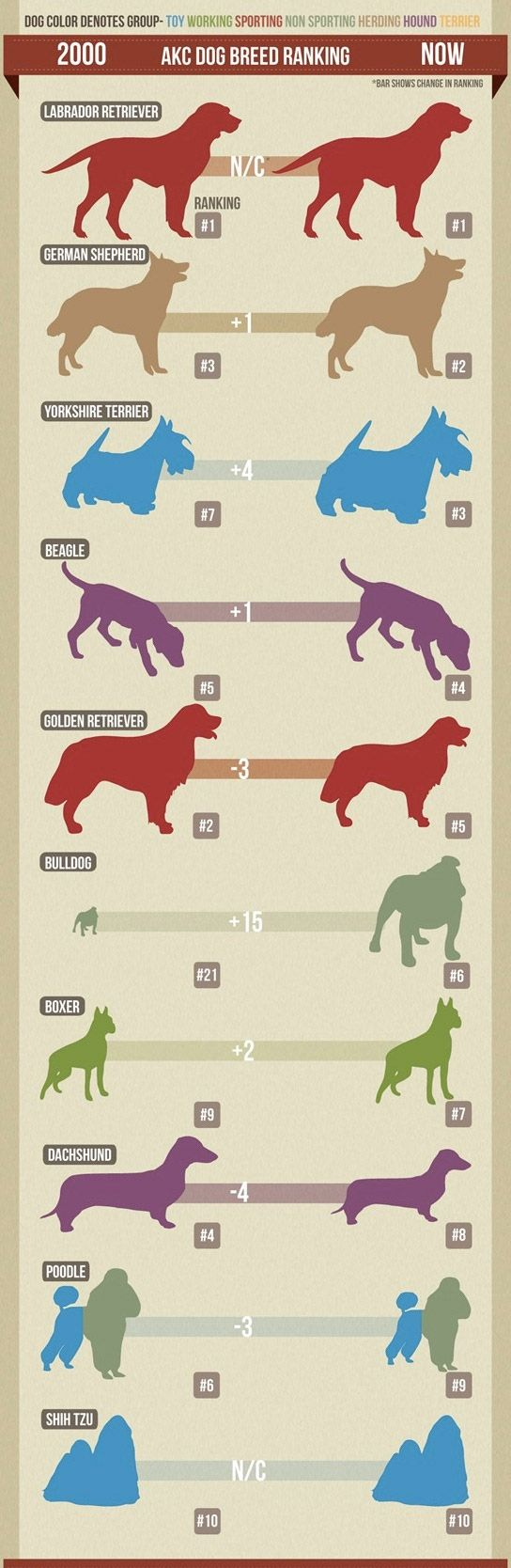 AKC Dog Breed Ranking Change over 10 years. #akc #dogs #breeds