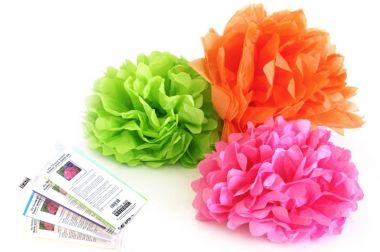 Tissue Paper Flower Pom-Pom Kit