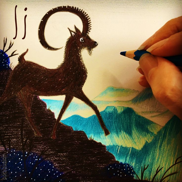 I is for ibex, drawing by Debi Hudson
