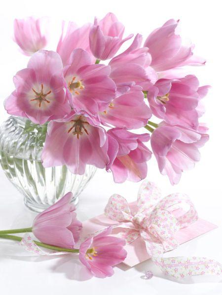 Marianna Lokshina - Bouquet of pink tulips_LMN28002.jpg