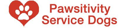 MN service dog charity training service dogs for individuals with disabilities.