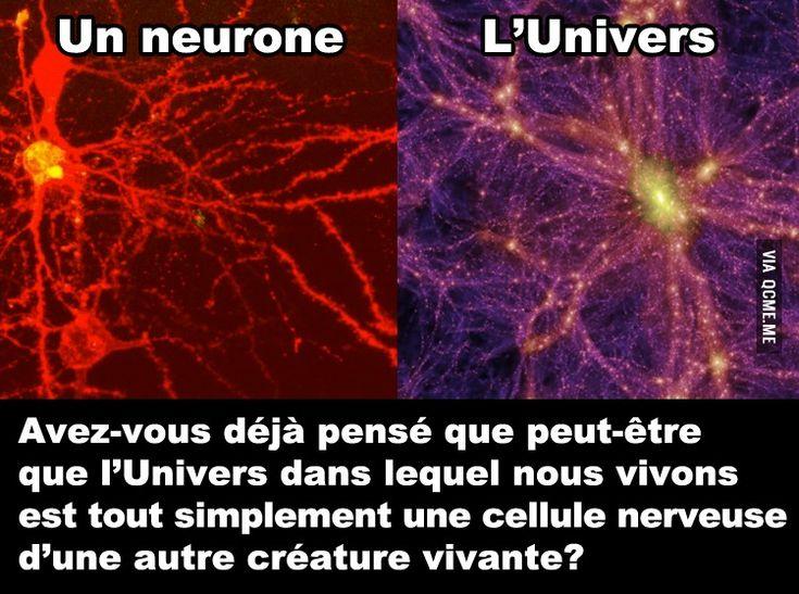 Avez-vous déjà pensé que peut-être que l'Univers dans lequel nous vivons est tout simplement une cellule nerveuse d'une autre créature vivante?
