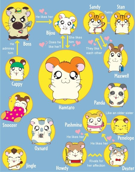 I loved Hamtaro so much that my guinea pig's name was Pashmina :3
