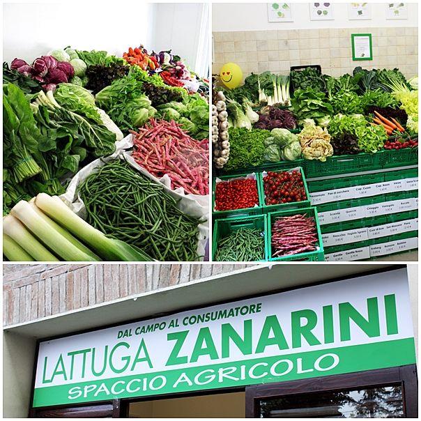 Nei nostri spacci agricoli di Modena e San Vito vi aspettano tante squisite bontà!!  #km0 #freschezza #sapore #territorio #spaccioagricolo