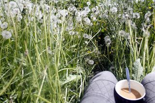 Martje: field of dandelions and morning coffee