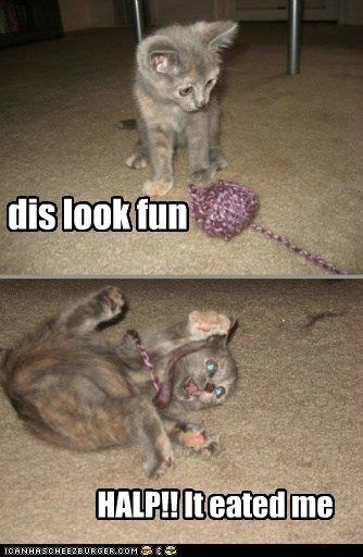 Crochet humor!: