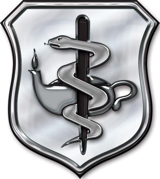 airforce nurse corp