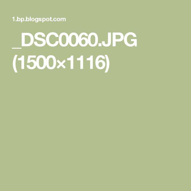 _DSC0060.JPG (1500×1116)