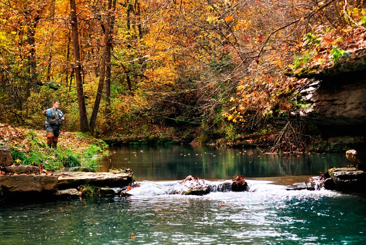 18 best images about dogwood canyon on pinterest parks for Dogwood canyon