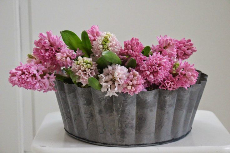 Blomsterbilleder - Mit landliv