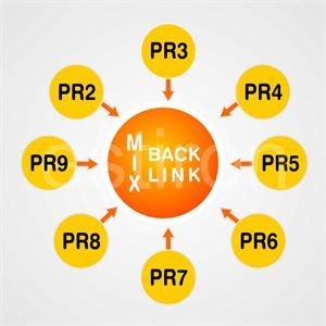 Order High Pagerank blog comment links to help increase your websites online visibility.Get to the top of search engines with our High Pagerank services. FOr more refer :- http://www.webseobuy.com/1-pr7-5-pr4-10-pr3-backlinks