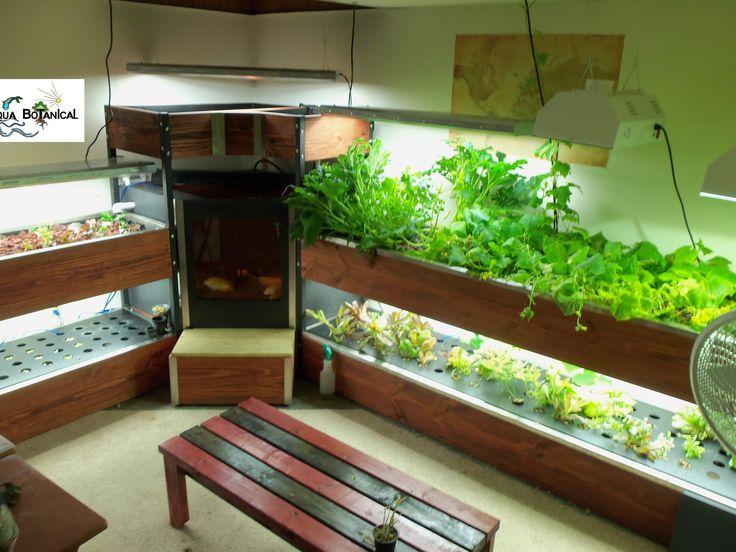 Indoor Fish Tank Aquaponics Indoor Aquaponics5913 3