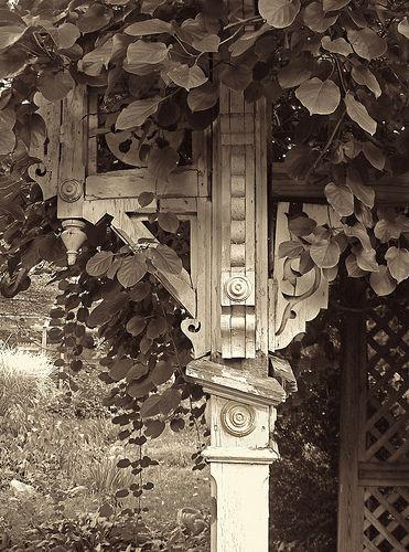 Backyard arbor by Equinox27, via Flickr