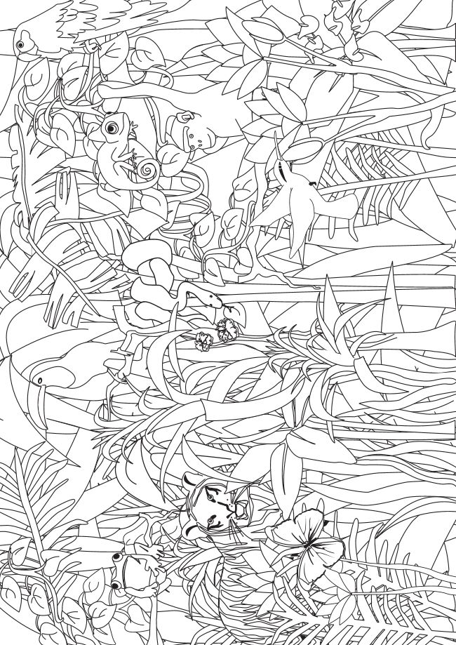 Jungle Coloring Search for pre-K and kindergarten kids - from www.kigaportal.com