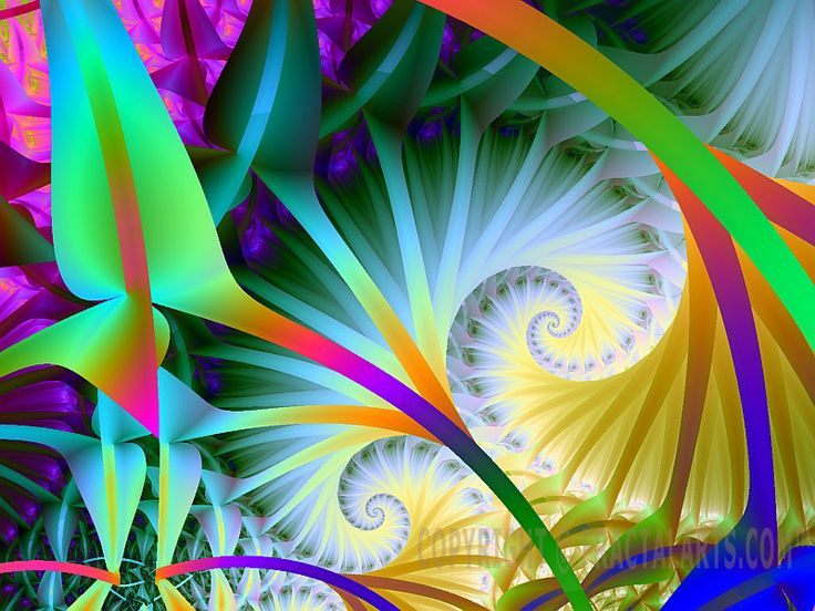 Fractal Art Prints Gallery I | Seattle Fractals Digital Art