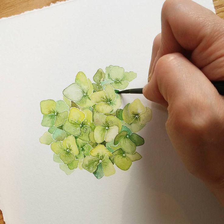 "Gefällt 632 Mal, 14 Kommentare - 그림 그리는 사람_김소라 (@sorasora_sr) auf Instagram: ""짤막하고 못생긴 내손이 눈에 먼저들어오다니 😂😂 Hydrngea Ing #nonameillustrator #illust #illustration #painting…"""