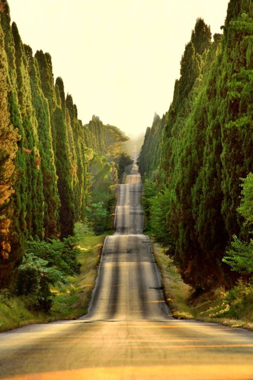 Tuscany, Italy photo via cajun
