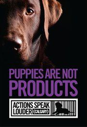 Puppy Mills - Animal Abuse Awareness and Education