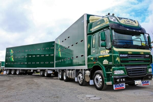 Bill ✔️ 2015: DAF Stock Trucks; Neville Bros Ltd. The DAF runs the company's own MX13 motor rated at 510hp and has an 18 speed Roadranger gearbox. The unit is dedicated to stock cartage mainly in the top half of the North Island, New Zealand.    Bill Gibson-Patmore.  (curation & caption: @BillGP). Bill✔️