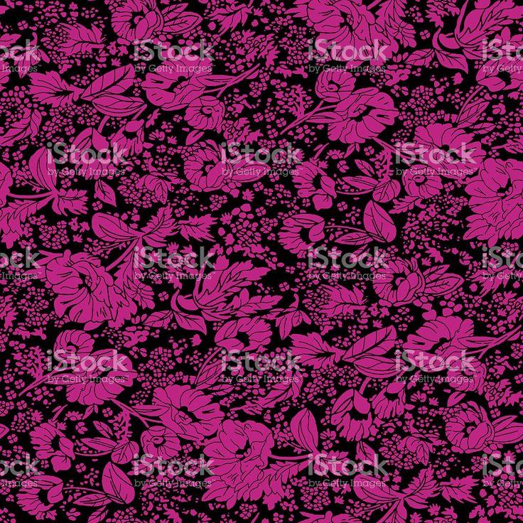 pinky rose royalty-free stock photo