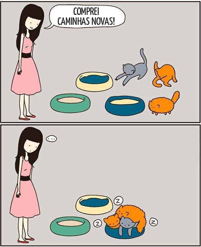 15tirinhas que aspessoas que têm gatos vão entender