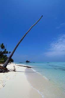 Ilha próximo de Semporna, Bornéu