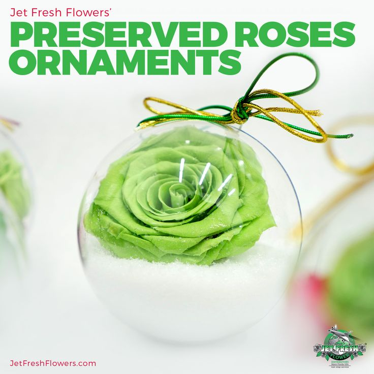 """Recreate these holiday preserved ornaments using our """"Monalisa"""" preserved rose variety. Many different colors and designs available at Jet Fresh Flowers."""