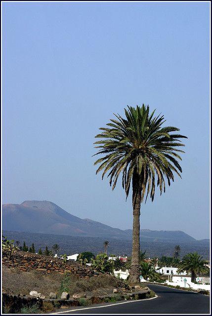 Timanfaya. Lanzarote