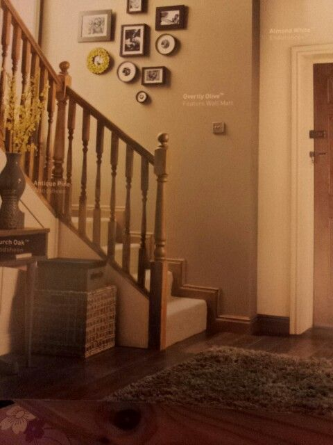 This is the hallway I want. From dulux colour guide. Overly olive and almond white