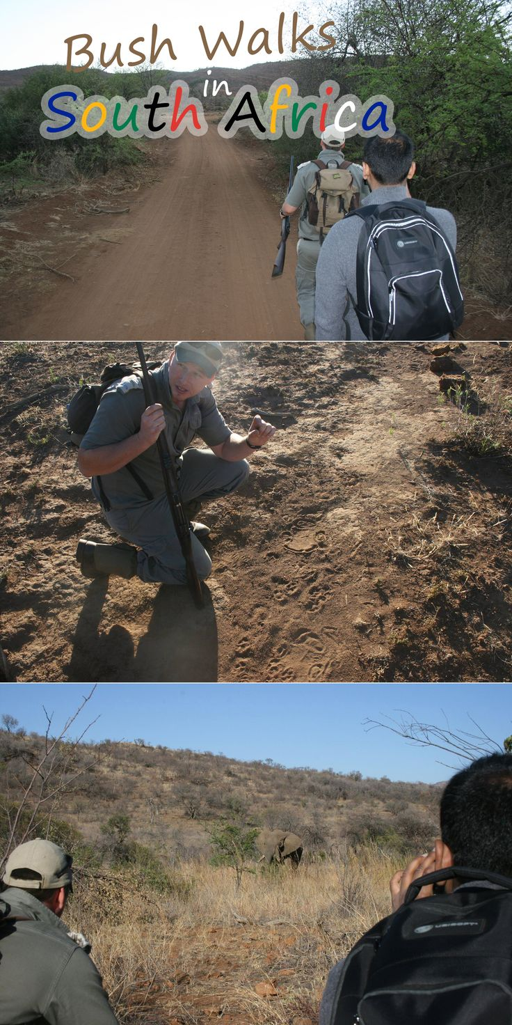Enjoy the thrill of tracking wild game on foot with a bush walk to Pilanesberg or Kruger Park. With experienced armed rangers, get up close and personal with nature as we did hundreds of years ago.