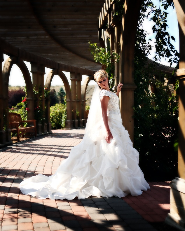 outdoor bridal portrait poses   Bridal Portrait Creation fee is $125.00 plus any charges the location ...