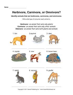 herbivore carnivore omnivore animals pinterest worksheets. Black Bedroom Furniture Sets. Home Design Ideas