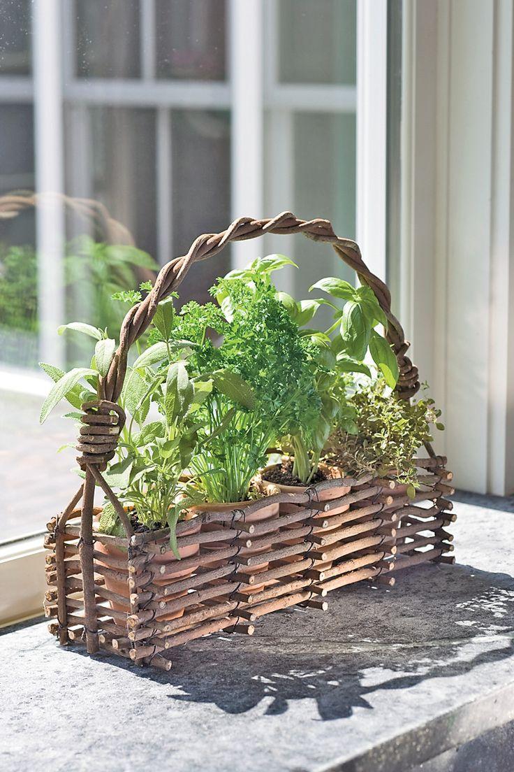 Herb Garden Window Basket