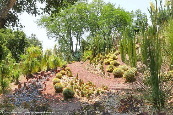 A Mediterranean Garden In Seattle Mediterranean Garden