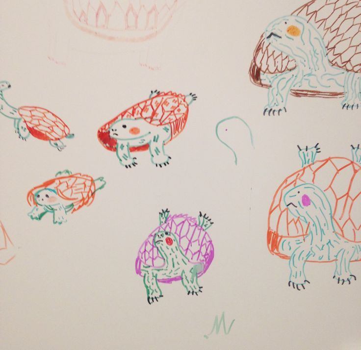 i drew a lot of turtles at my cousins/@3sso