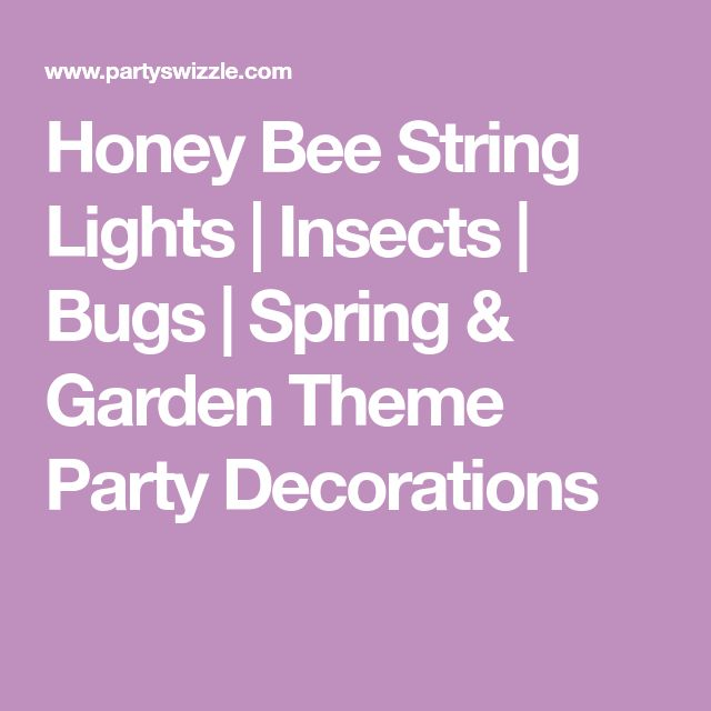 Honey Bee String Lights | Insects | Bugs | Spring & Garden Theme Party Decorations