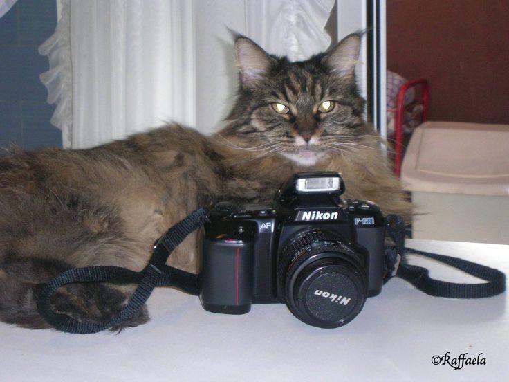 Professione Fotoreporter 2