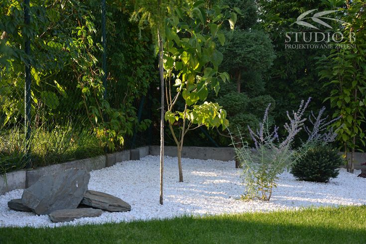Modern garden   Poland   Studio B