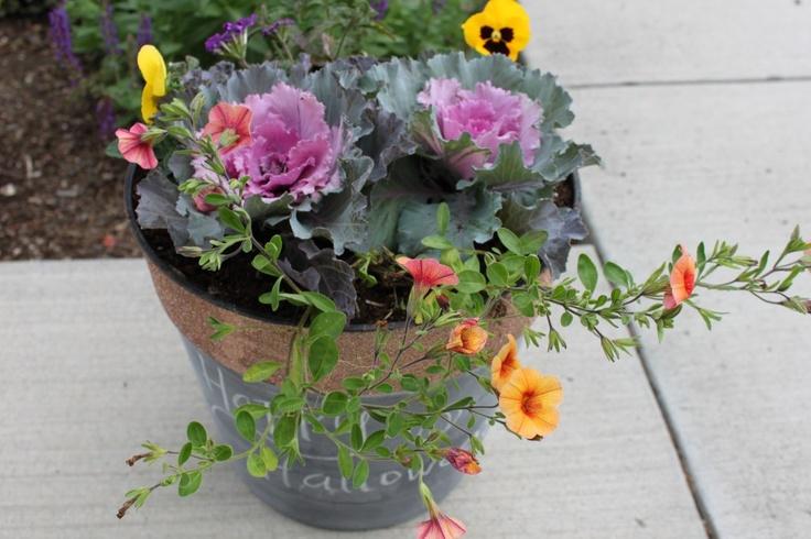 Fall flower pot