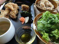 健康志向の女性には渋谷の自然食レストランデイライトキッチンがおすすめですよ(ˊᗜˋ)و 開放感があるお店で緑が多いから癒されますね 一番おすすめなメニューがウィークリーランチセット メインのおかずにお惣菜三品無農薬こしひかり米と押し麦ご飯野菜とキヌアのスープグリーンサラダドライフルーツがセットになっていますよ( お子様セットやベビーフードもあるからお子さん連れでも安心して使えるのが魅力ですね  #渋谷 #ランチ #東京 #自然食 tags[東京都]